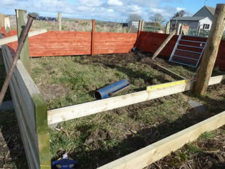 Picture of building an outdoor run and shelter for pet pigs
